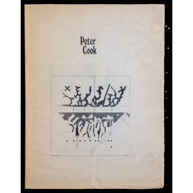 Peter Cook. Galería de Arte Buades, Madrid, 12 al 30 de diciembre, 1978 - Galería Viciana, Valencia, 9 al 24 de enero, 1979