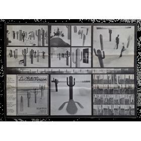Kaktus. Francesco Volsi. La Sala Vinçon, Barcelona, 3 - 18 de abril 1975