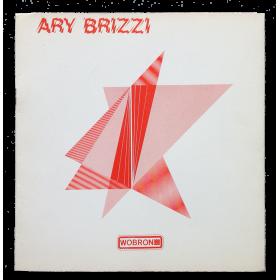 """Ary Brizzi - """"Espacio activado"""""""
