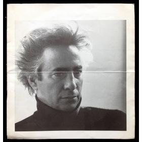 Rogelio Polesello. Galería Rubbers, Buenos Aires, 13 de agosto al 1º de septiembre de 1981