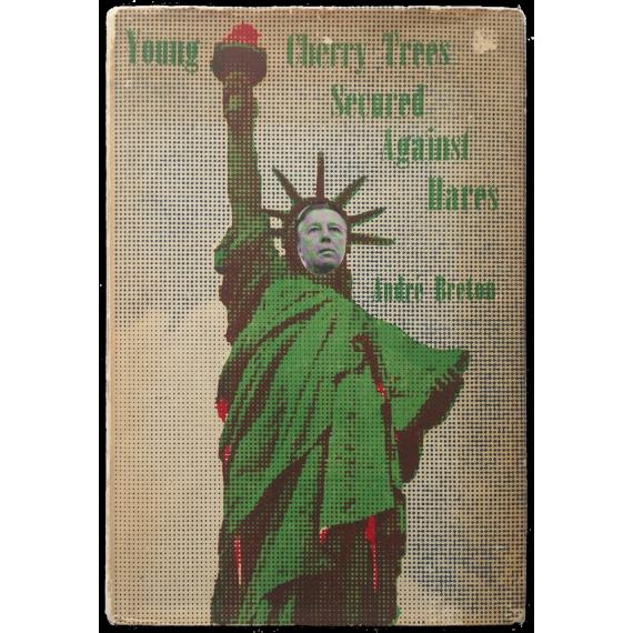 Young Cherry Trees Secured Against Hares - Jeunes cerisiers garantis contre les lièvres