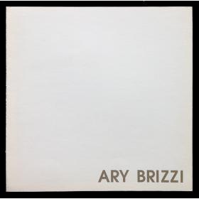 Ary Brizzi. Pinturas 1990. Galería Rubbers, Buenos Aires, 18 de Septiembre al 6 de Octubre 1990