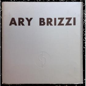 Ary Brizzi. Pinturas. Galería Rubbers, Buenos Aires, octubre de 1973