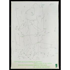 Observación de los movimientos de una mosca... - Walter Marchetti (1967)